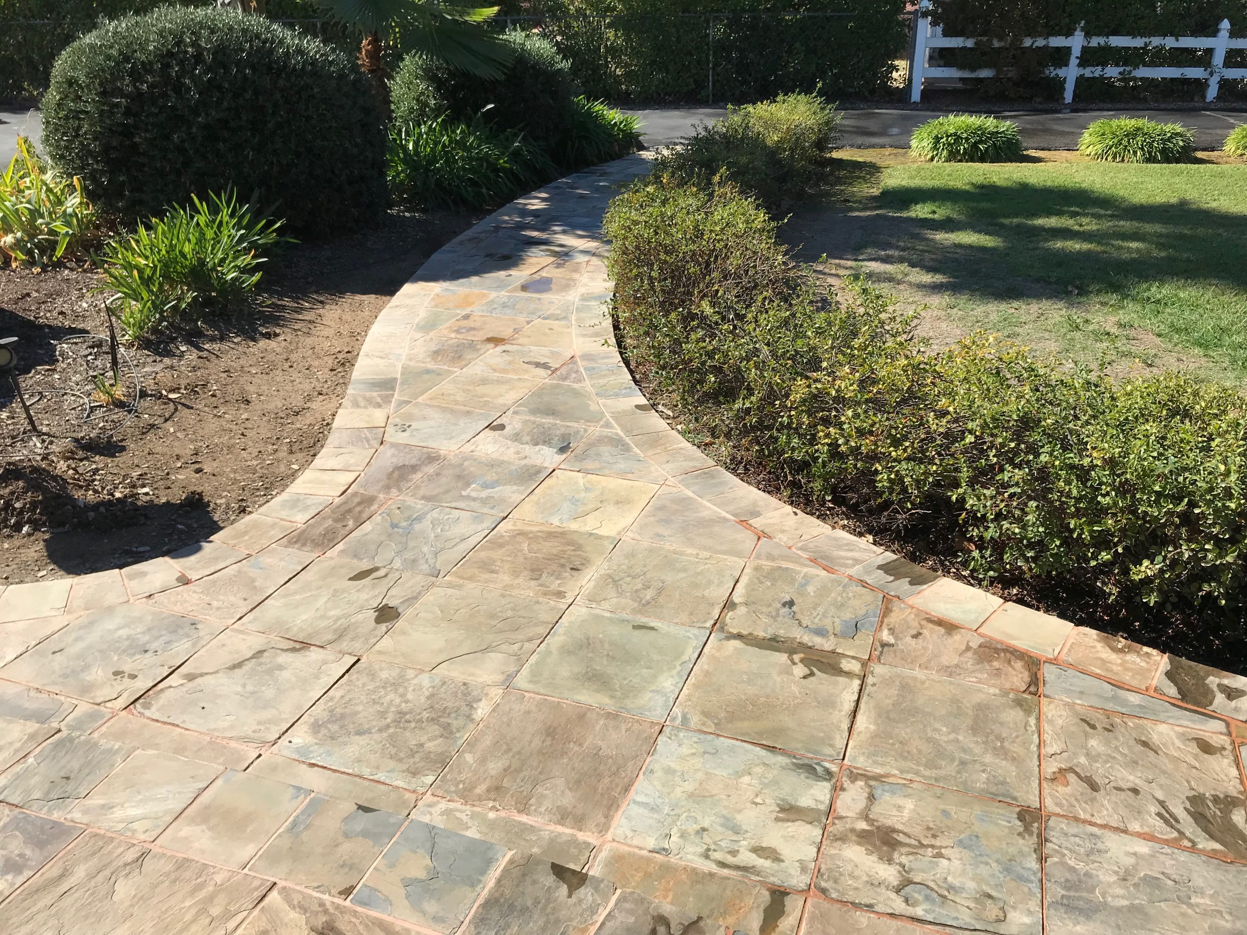 this image shows stamped concrete pleasanton project